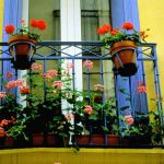 balcony-flowers-1